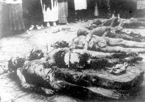 Жертвы Красного террора. Трупы заложников, найденные в херсонской ЧК в подвале дома Тюльпанова. 1919 год