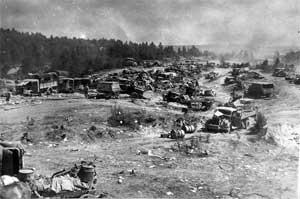 Колонна 9-й немецкой армии, разгромленная ударом с воздуха неподалеку от Бобруйска.