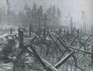 Немецкие укрепления под Ленинградом, январь 1943 г.